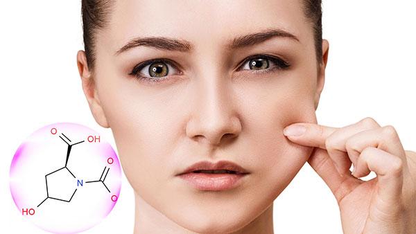 Protecteur de la peau en fibre d'élastine